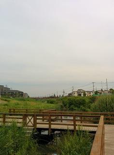 ちょっとした水辺 大堀川水辺公園までのお散歩&ジョギングルート