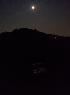 流山のホタル 今がまさに見ごろ 8月1日には鑑賞会も開催されます。