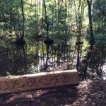 柏の葉の聖地 大堀川源流「こんぶくろ池」