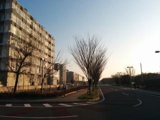 柏の葉ぐるぐる 柏の葉公園&東京大学を8の字に周回往復13.9km