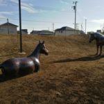 流山の歴史を語るおおたかの森北1号公園のお馬さんと野間土手