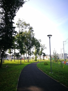 十太夫近隣公園 定点観察(夏至編)