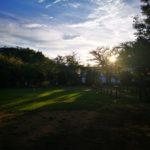 流山運動公園公園の西陽