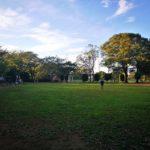 流山運動公園にカフェ、レストラン、バーベキュー場の整備検討へ