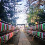 流山の奇祭、裸祭り ヂンガラ餅神事は本日開催(2020/01/12)