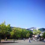 葉山珈琲5月1日からしばらく休業